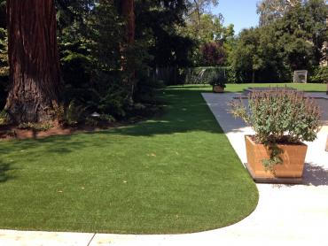 Artificial Grass Photos: Plastic Grass Munds Park, Arizona Dog Grass, Front Yard Landscaping Ideas