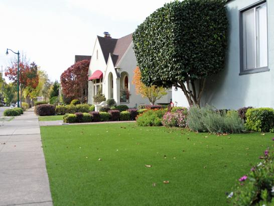 Artificial Grass Photos: Synthetic Grass Chandler, Arizona Backyard Deck Ideas, Front Yard Design