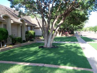 Artificial Grass Photos: Synthetic Grass Cost Benson, Arizona Roof Top, Front Yard Landscaping