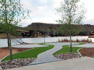 Artificial Grass Photos: Synthetic Grass Cost Casa Grande, Arizona Design Ideas