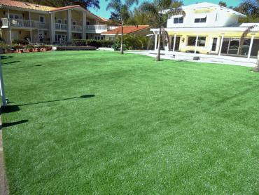 Artificial Grass Photos: Synthetic Grass Cost Greer, Arizona Backyard Deck Ideas, Swimming Pool Designs