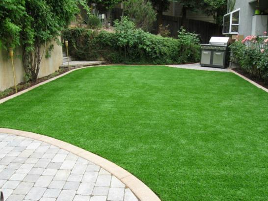 Artificial Grass Photos: Synthetic Grass Cost Poston, Arizona Landscaping Business