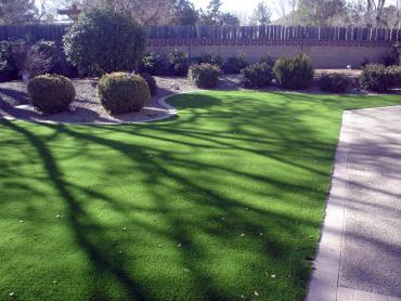 Artificial Grass Photos: Synthetic Grass Sonoita, Arizona Landscape Photos, Front Yard Landscape Ideas