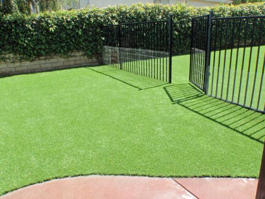 Artificial Grass Photos: Synthetic Lawn Black Canyon City, Arizona Pet Paradise, Front Yard Ideas