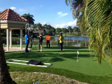 Synthetic Lawn Gold Camp, Arizona How To Build A Putting Green, Small Backyard Ideas artificial grass