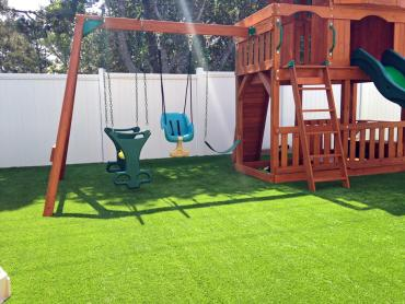 Artificial Grass Photos: Synthetic Lawn Keams Canyon, Arizona Roof Top, Backyard Landscaping