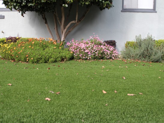 Artificial Grass Photos: Synthetic Turf Oro Valley, Arizona Landscape Rock, Small Front Yard Landscaping