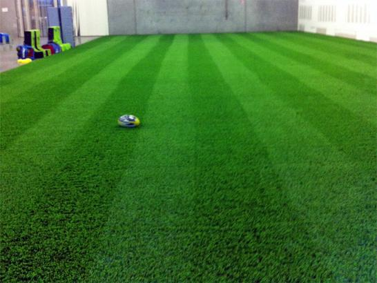 Artificial Grass Photos: Synthetic Turf Rio Verde, Arizona Sports Athority