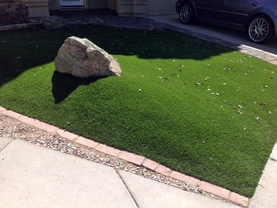 Artificial Grass Photos: Synthetic Turf South Tucson, Arizona Lawn And Garden