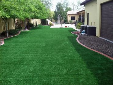 Synthetic Turf Supplier Cactus Forest, Arizona Landscape Rock, Beautiful Backyards artificial grass