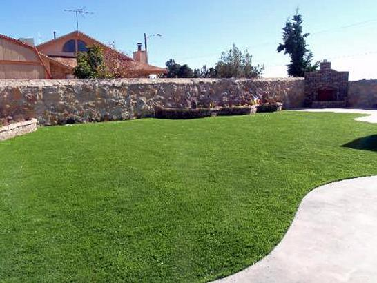 Artificial Grass Photos: Synthetic Turf Supplier Hotevilla-Bacavi, Arizona Landscape Ideas, Backyard Makeover