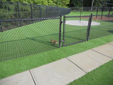 Artificial Grass Photos: Synthetic Turf Supplier Pinetop-Lakeside, Arizona Backyard Deck Ideas, Recreational Areas