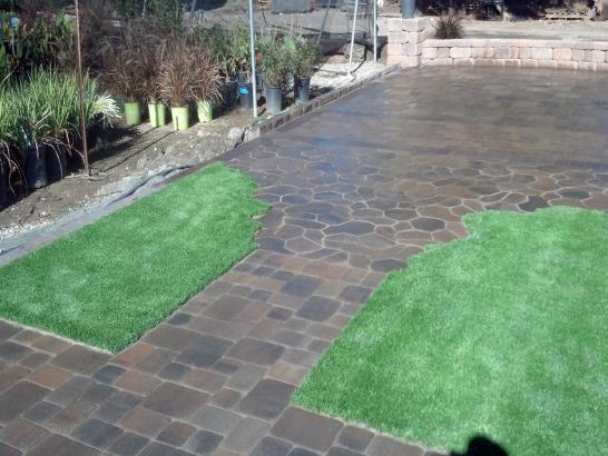 Artificial Grass Photos: Turf Grass Queen Valley, Arizona Lawn And Landscape, Backyard Landscape Ideas