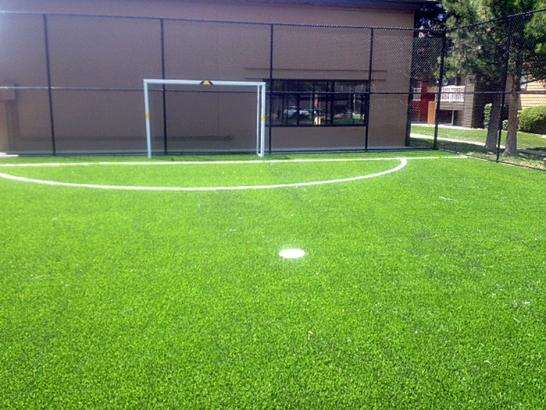 Artificial Grass Photos: Turf Grass Wikieup, Arizona Paver Patio